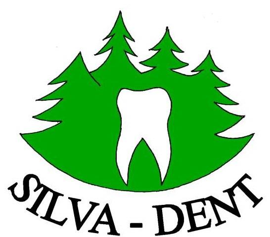Logo Silva dent